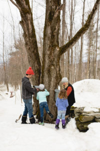 Webster Family Maple Sugaring | Little Hill Sugarworks
